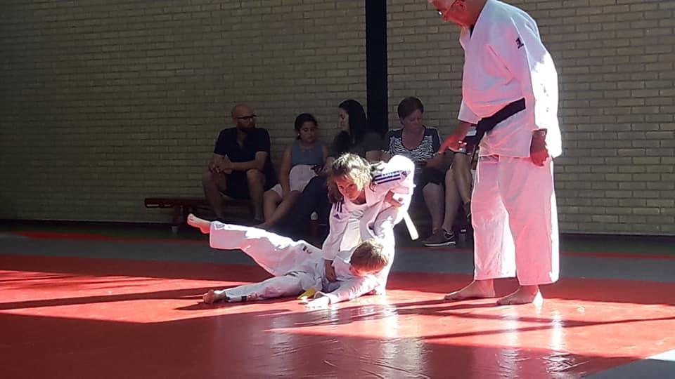 Examens judo